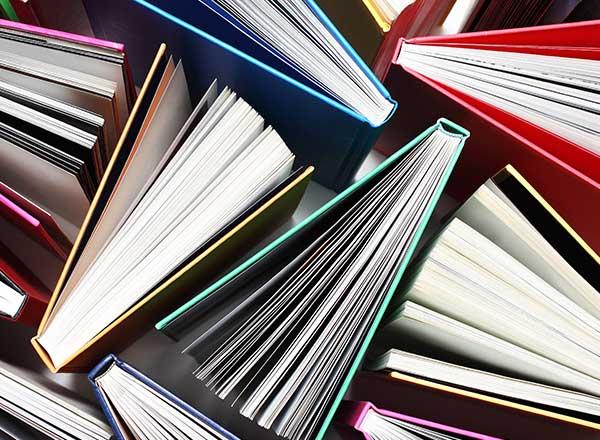 small business branding books