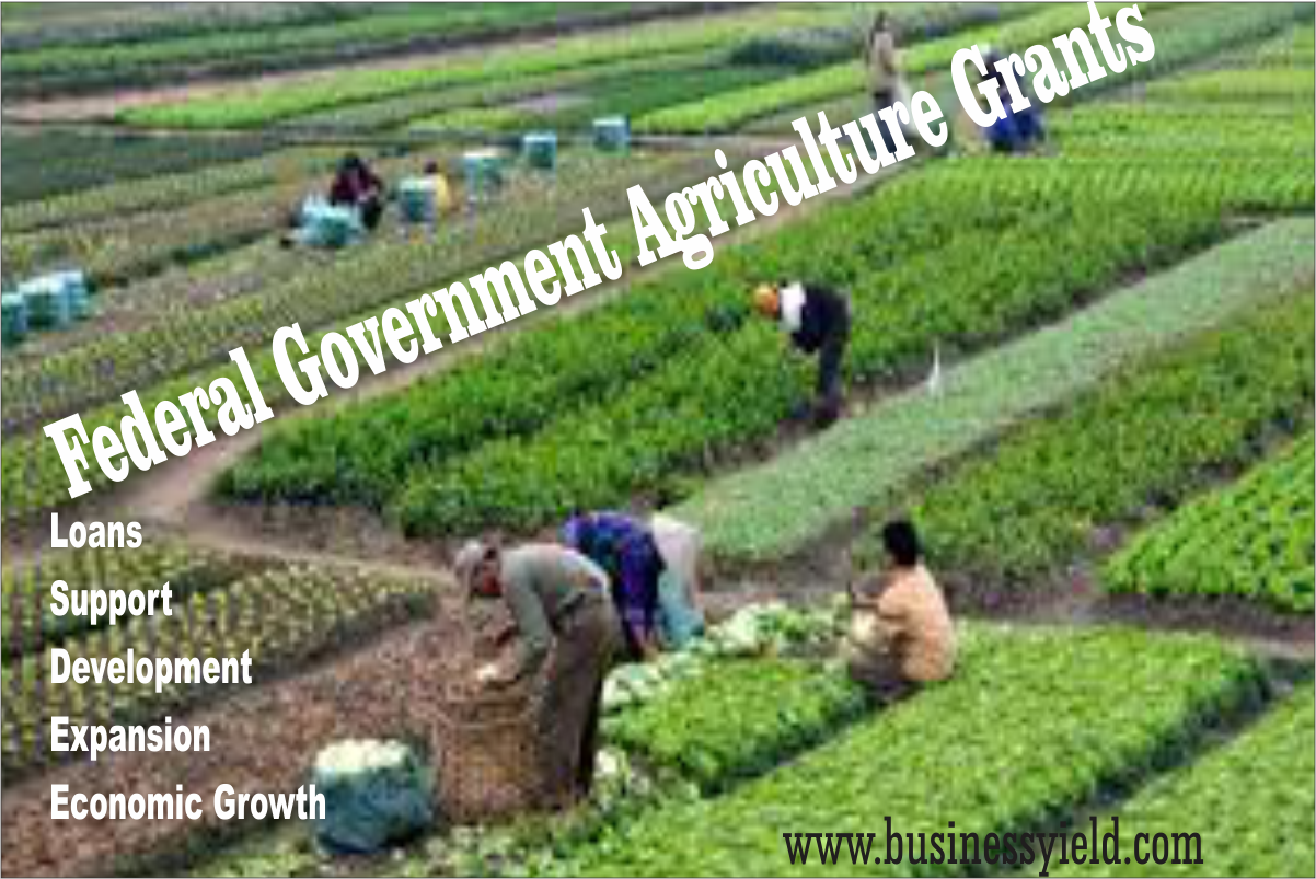 List of Federal Government Grants