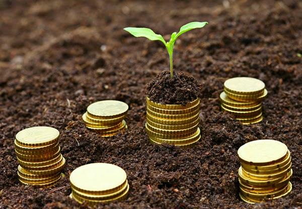 microfinance bank